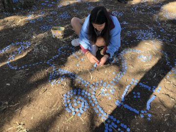 Your Public Art Project